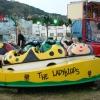 john-walter-wilmots-ladybirds-burntisland-summer-2009-020