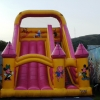morgan-millers-inflatable-slide-burntisland-summer-2009-019