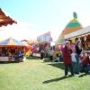 view-on-the-fair-summer-nairn-135
