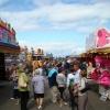 view-on-the-fair-summer-nairn-165