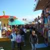 view-on-the-fair-summer-nairn-234